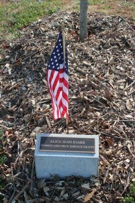 Veterans Grove Marker placed at a maple tree image. Click for full size.