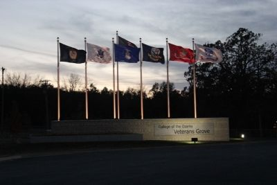 Veterans Grove at dusk image. Click for full size.