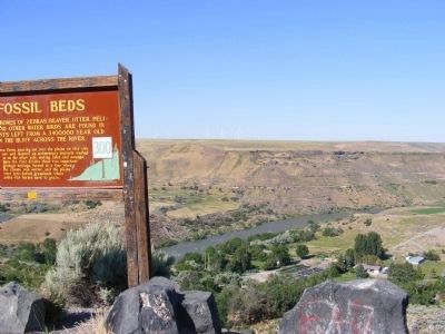 Fossil Beds image. Click for full size.