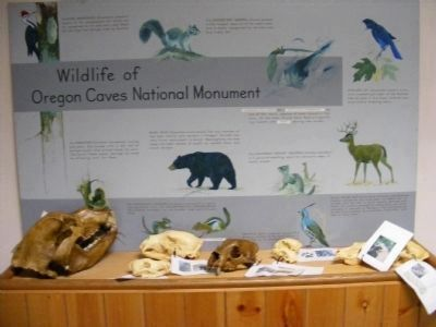 Display at the Visitor's Center image. Click for full size.