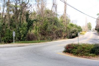 Hitchcock Woods Marker Laurens Street SW at S Boundry Avenue image. Click for full size.