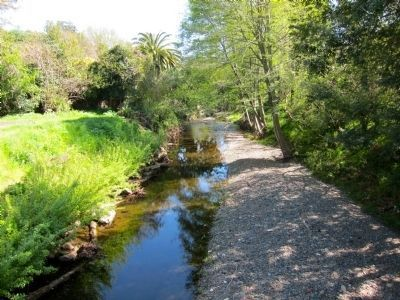 Corte Madera Creek - Looking South from Bridge image. Click for full size.