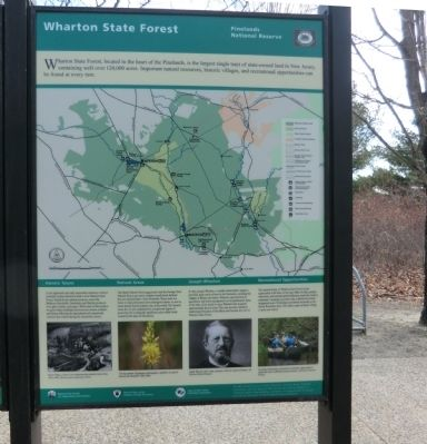 Wharton State Forest Marker image. Click for full size.