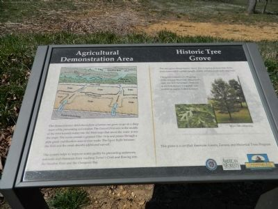 Agricultural Demonstration Area / Historic Tree Grove Marker image. Click for full size.