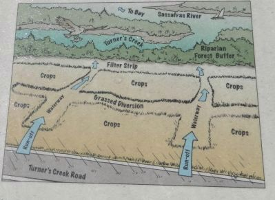Diagram of Runoff Area image. Click for full size.