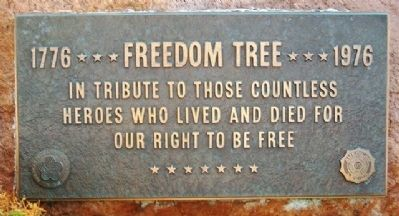 Freedom Tree Marker image. Click for full size.