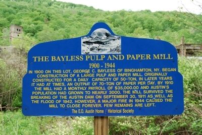 The Bayless Pulp and Paper Mill Marker image. Click for full size.