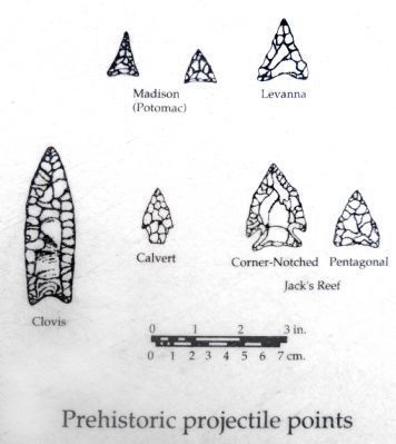Prehistoric Projectile Points Photo, Click for full size