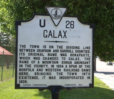 Galax Marker image. Click for full size.