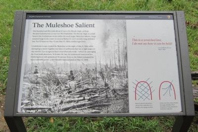 The Muleshoe Salient Marker image. Click for full size.