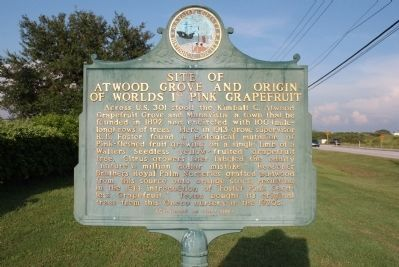 Site of Atwood Grove and Origin of World's 1st Pink Grapefruit Marker Side 1 image. Click for full size.