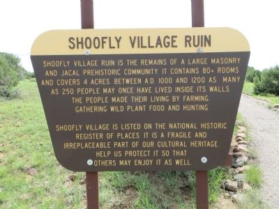 Shoofly Village Ruin Marker image. Click for full size.