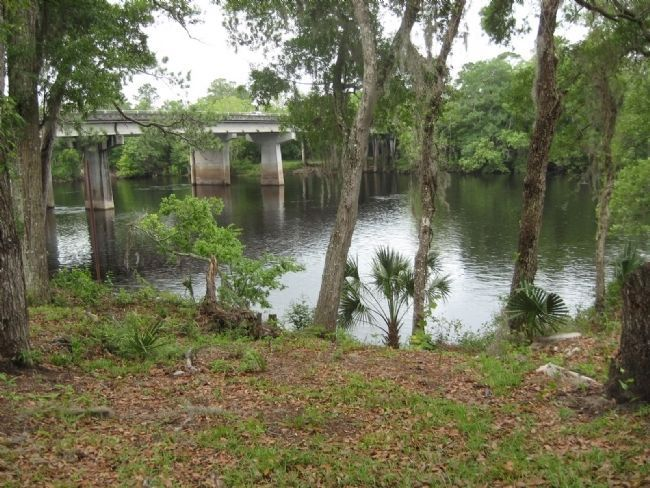 Shoreline of the Suwannee River taken from Fort Fanning Historical Park. image. Click for full size.
