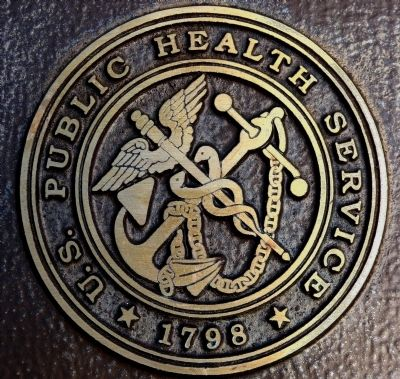 The Public Health Service Seal image. Click for full size.