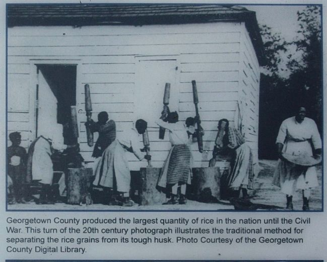 Georgetown County produced... image. Click for full size.