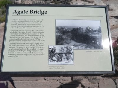 Agate Bridge Marker image. Click for full size.
