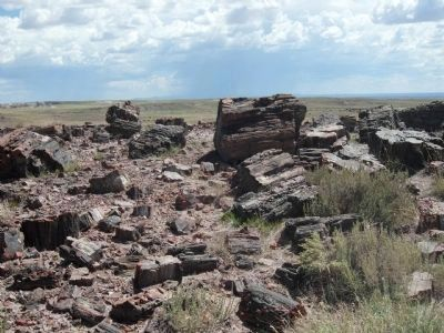 Petrified Forest National Park image. Click for full size.