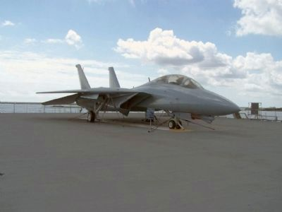 F-14 Tomcat Photo, Click for full size