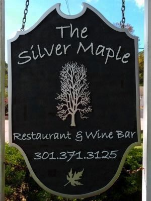The Silver Maple image. Click for full size.
