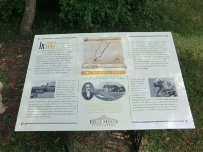 The Natchez Trace Marker image. Click for full size.