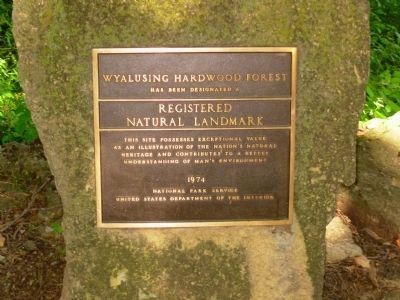 Wyalusing Hardwood Forest Marker image. Click for full size.