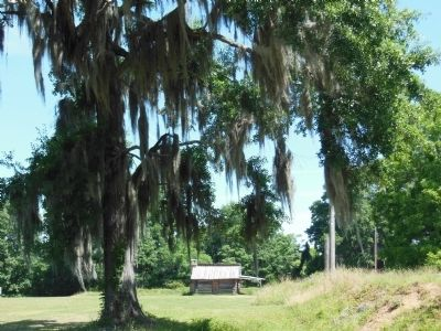Fort Jackson reproduction (south side) image. Click for full size.