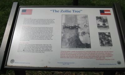 The Zollie Tree Marker image. Click for full size.
