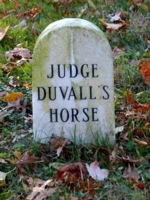 Judge Duvall's Horse image. Click for full size.
