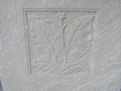 Relief carving of tobacco on Original Patentees Memorial Marker image. Click for full size.