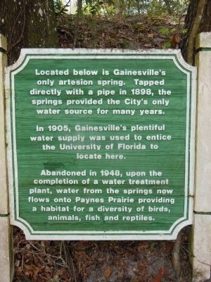 Gainesville's Only Artesian Spring Marker image. Click for full size.