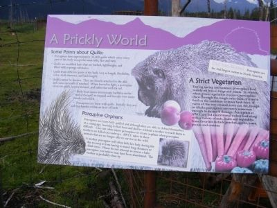 A Prickly World Marker image. Click for full size.