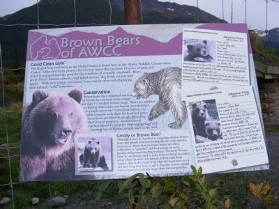 Brown Bears of AWCC Marker image. Click for full size.