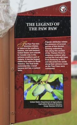 The Legend of the Paw Paw Marker image. Click for full size.