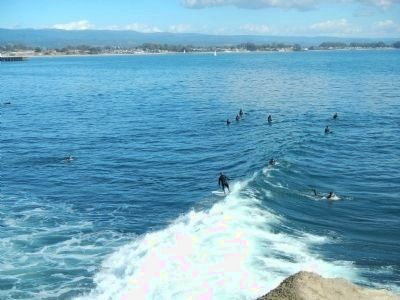 Surfing at Steamer Lane in January image. Click for full size.