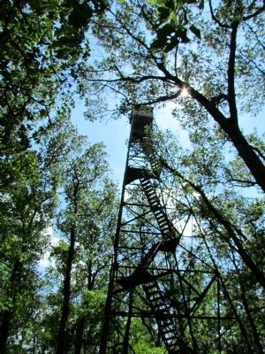 Stairs Leading to Top of Fire Tower image. Click for full size.