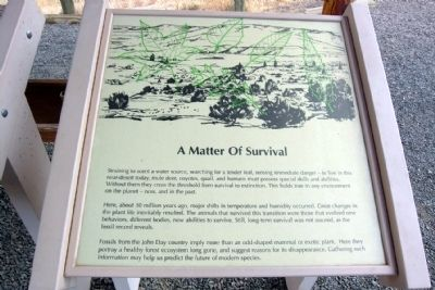 A Matter of Survival Marker image. Click for full size.