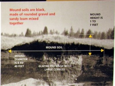 A Mima Mound image. Click for full size.