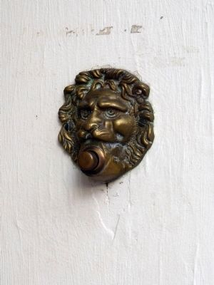 Lion Doorbell image. Click for full size.