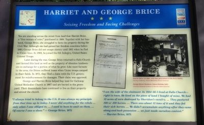 Harriet and George Brice Marker image. Click for full size.
