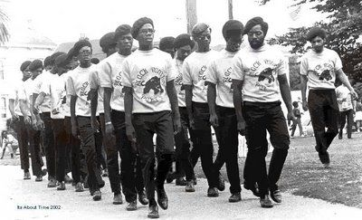The Black Panther Party image. Click for full size.