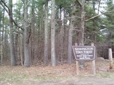 Newington Town Forest Sign image. Click for full size.