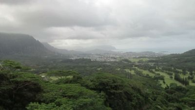 View from Nu'uanu Pali State Wayside image. Click for full size.