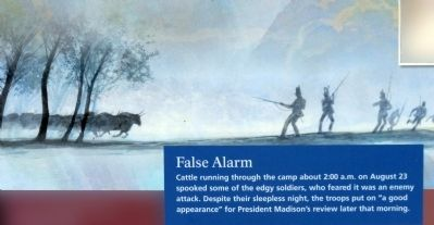 False Alarm image. Click for full size.