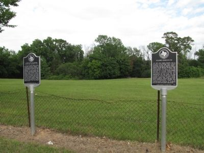 Morgan G. Sanders Marker and Alamo Institute Marker image. Click for full size.