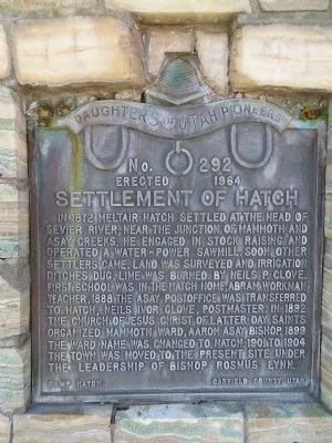 Settlement of Hatch Marker image. Click for full size.