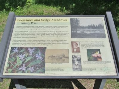Shorelines and Sedge Meadows Marker image. Click for full size.