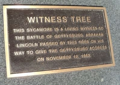 Witness Tree Marker image. Click for full size.