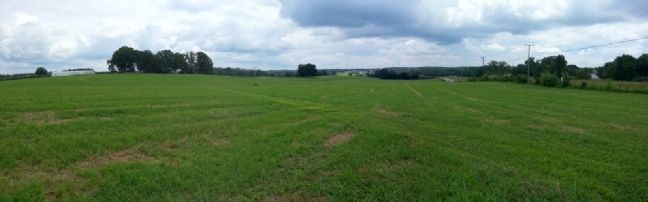 First Day at Chancellorsville (facing east) image. Click for full size.
