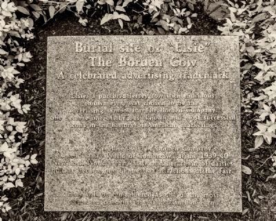 "Burial site of ""Elsie"" Marker at the MOO-memorial image. Click for full size."