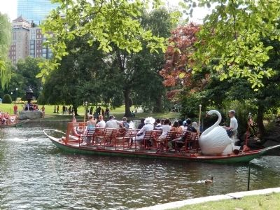Swan ride in Boston Public Garden image. Click for full size.